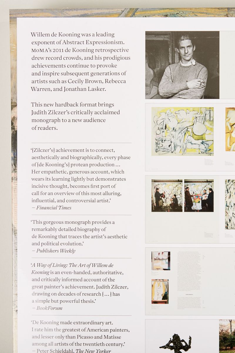 Phaidon Buch 'Willem de Koonig' Multi